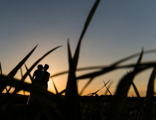 Huwelijksfotograaf te Bierbeek